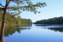 Course Image NRF 325: Soil Water Resources and Catchment Forestry
