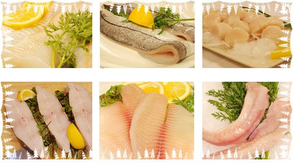 Course Image AFM 416 FISH PROCESSING, PRESERVATION AND MARKETING