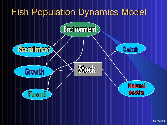 Course Image AFM 321 FISH POPULATION DYNAMIC AND STOCK ASSESSMENT